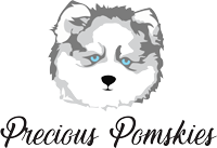 Precious-Pomskies-Logo---grays-100